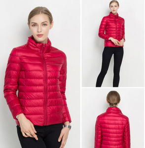 Factory Cheap Colorful Fashion Top Quality Women′s light Jacket