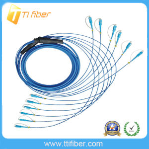 Sc-Sc Armored Fiber Optic Patch Cord, Singlemode G657A2, 6 Cores pictures & photos