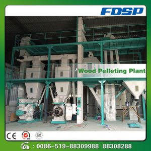 Best Selling CE Assurance Biomass Fuel Pellets Forming Plant pictures & photos