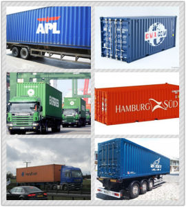 Consolidate One-Stop Cargo Checking & Trcuking & Warehousing pictures & photos