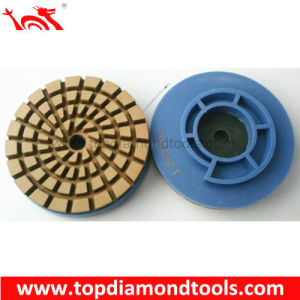 Snail Lock Diamond Polishing Pads pictures & photos