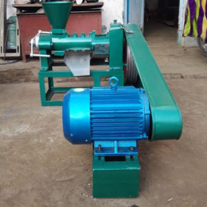Small Oil Presser Mill for Sunflower Seeds (6YL-68) pictures & photos