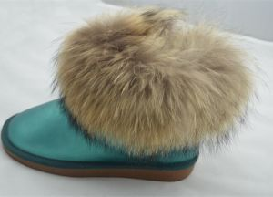 Lady Fashion Warm Snow Boots (FB-80513) pictures & photos