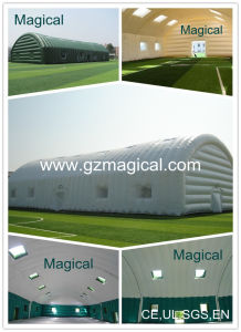 Special Inflatable Tunnel Tent (MIC-122) pictures & photos