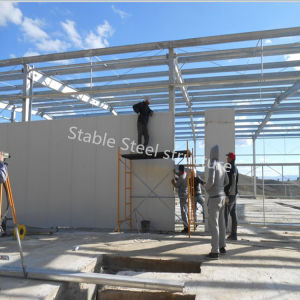 Prefabric Steel Structure Building Material to Build Processing Plant pictures & photos
