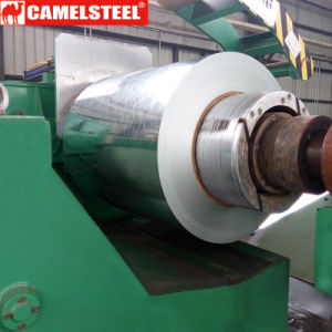 15 Yrs Experience Camelsteel Galvanized Steel Coil pictures & photos