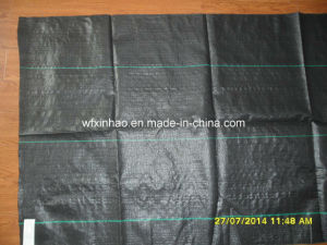 PP Woven and Non-Woven Complex Acupunctured PP Weed Barrier Cloth pictures & photos