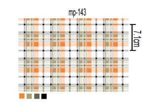 Checks Design Printed Mini Matt Fabric 100%Polyester pictures & photos