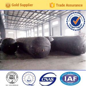 Vulcanizing From Rubber of Pneumatic Tubular Forms pictures & photos