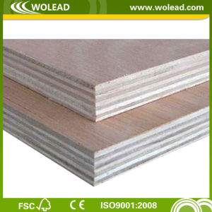 18mm Hardwood Core Commercial Plywood (w15226)