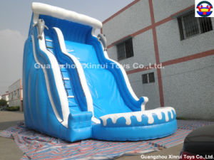 Inflatable Water Slide(XRSL-53)