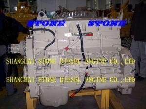 Cummins Engine M11-C350 E20 pictures & photos