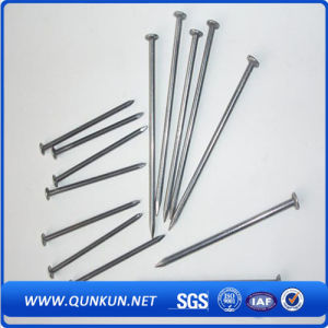 Good Quality Screw Shank Twisted Roofing Nail pictures & photos