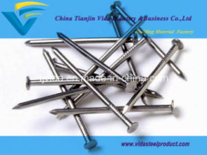 Excellent Common Round Wire Nails pictures & photos