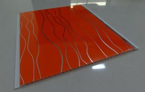 250X6mm New Mould for Middle East Market PVC Ceiling Panel