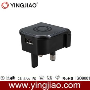 5V 2.1A 6W AC/DC Adapter for iPad pictures & photos