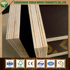 Concrete Plywood / Shuttering Plywood/ Film Faced Plywood for Construction pictures & photos