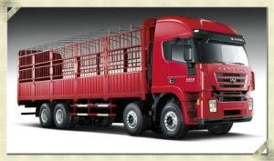 Hongyan Genlyon 8*4 Cargo Truck
