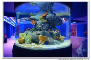 Round Fish Tank for Hot Mall pictures & photos