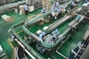 Full Automatic 3000L/H Drinking Water Production Line pictures & photos
