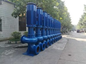 Wl Vertical Sewage Pump with Coupling pictures & photos