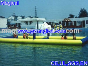 Inflatable Fun Water Field in Big Size (MIC-423) pictures & photos