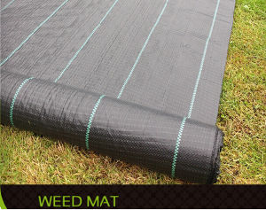 Garden Weed Control Fabric/ Capped Fabric/ Ground Cover pictures & photos