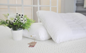 White Hotel Home Cotton Pillow pictures & photos