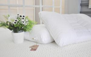 White Hotel Home Cotton Pillow