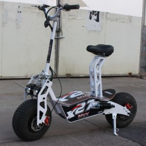 off-Road Electric Motorcycle 1600W Fat Tire 48V 12ah for Cross-Country pictures & photos
