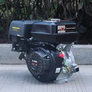 Bison (China) BS177f Air Cooled Safety Gasoline Engine for Sale pictures & photos
