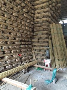 Cheap Raw Dry Tonkin Bamboo Poles pictures & photos