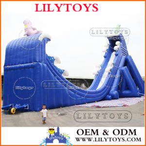 10% Discount for Water Park Use Different Theme Inflatable Big Water Slide, Inflatable Slide. pictures & photos