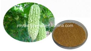 Momordica Charantia Linn Fruit Extract Powder 10: 1 / 1%-10% Charantin pictures & photos