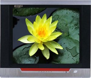 21 Inch Color CRT TV (GFL03)