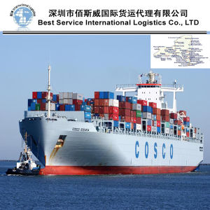 LCL Shipping to New York, (USA) - Expert Shiping Agent pictures & photos