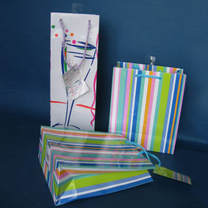 Paper Shopping Bag With Your Logo pictures & photos