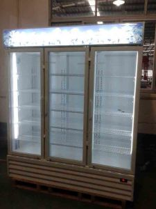 Commercial 1500L Display Glass Door Refrigerated Freezer Showcase for Wholesale pictures & photos