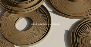 PTFE Guide Tape pictures & photos