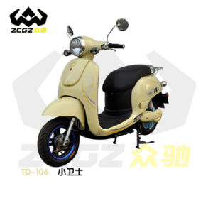 Zhong Chi High Quality and Fashion Electric Motorbike Electric Motorcycle with 800W Motor