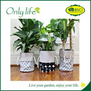 Onlylife BSCI Popular Eco-Friendly Indoor/Outdoor Fabric Garden Planter pictures & photos