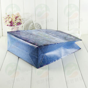 Auto-Formed Recycable 3D Non Woven Packing Bag (MY-025) pictures & photos