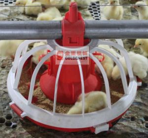 Virgin Material Poultry Equipment for Broiler and Breeder