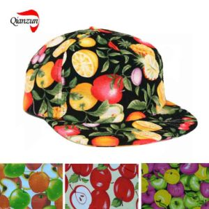 Vintage Fruits Polo Hat pictures & photos