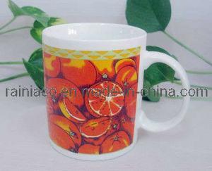 Ceramic Cup/Mug (020B)