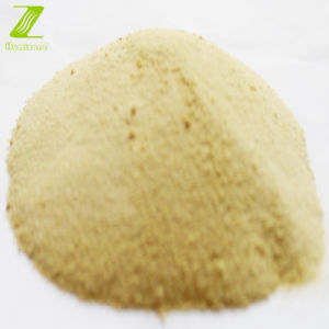 Amio Acid Chelate Trace Element Fertilizer: Humizone Amino Acid Chelate Zinc (AAC-Zn-P) pictures & photos