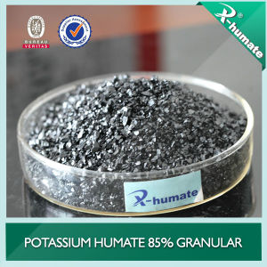 Potassium Humate Shiny Granular pictures & photos