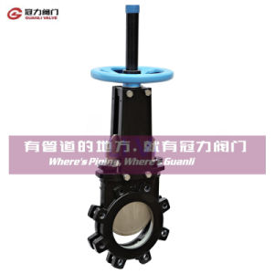 ANSI16.5 Mss Sp81 Lug Knife Gate Valve pictures & photos