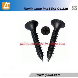 Tianjin Manufacturer Fine Thread Drywall Screw pictures & photos