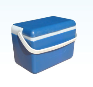 Cooler Box, Ice Box, 8L, Cooler Box pictures & photos